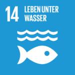 SDG 14 Leben unter Wasser